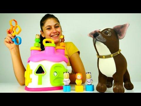Cotoons çizgi film oyuncakları ile çocuk videoları