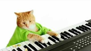 Keyboard Cat's Wonderful Pistachios Commercial! thumbnail