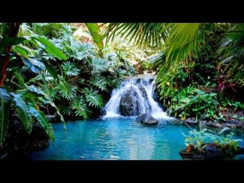 Healing Pool Meditation