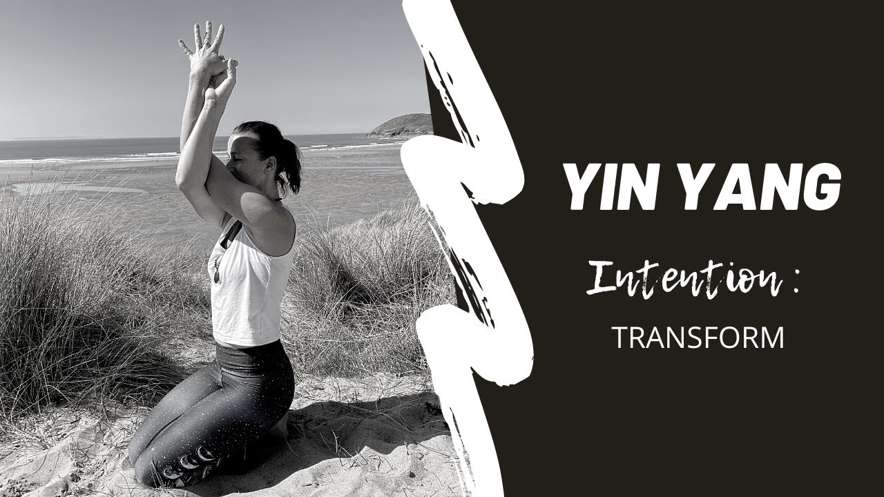 Yin Yang : Transform