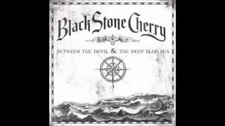 White Trash Millionaire- Black Stone Cherry
