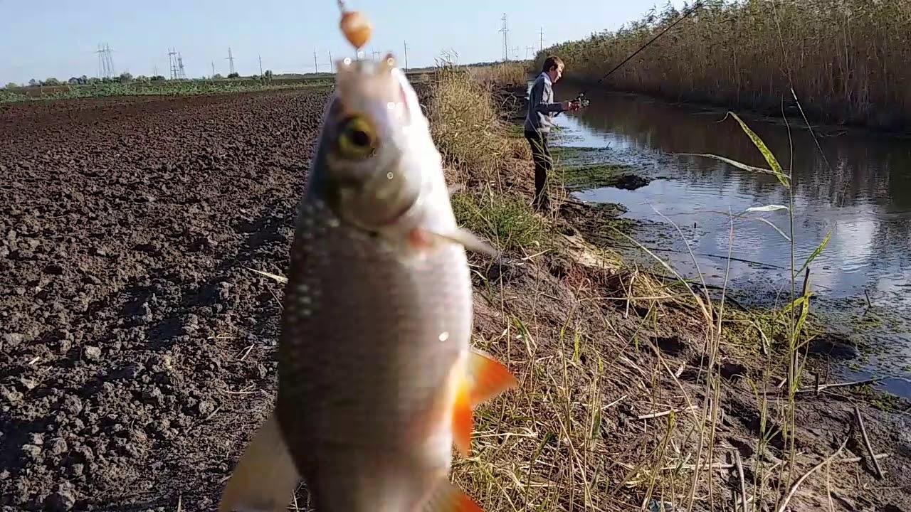 Календарь рыболова - Ноябрь