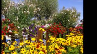 Camping des roses, Quend-plage ,Gournay en bray ,jardinerie ,