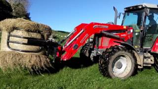 Feeding out hay bales