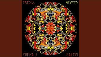 Hyvyys (feat. Puppa J & Kalevi)