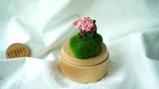 운명적 만남 오르골(봄꽃) - 하울의 움직이는 성OST