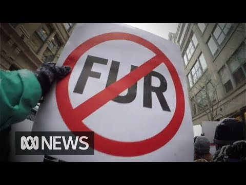 Fashion turns away from real fur. But is fake fur just as bad?