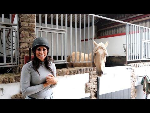 Horse Riding Dublin - The Paddocks