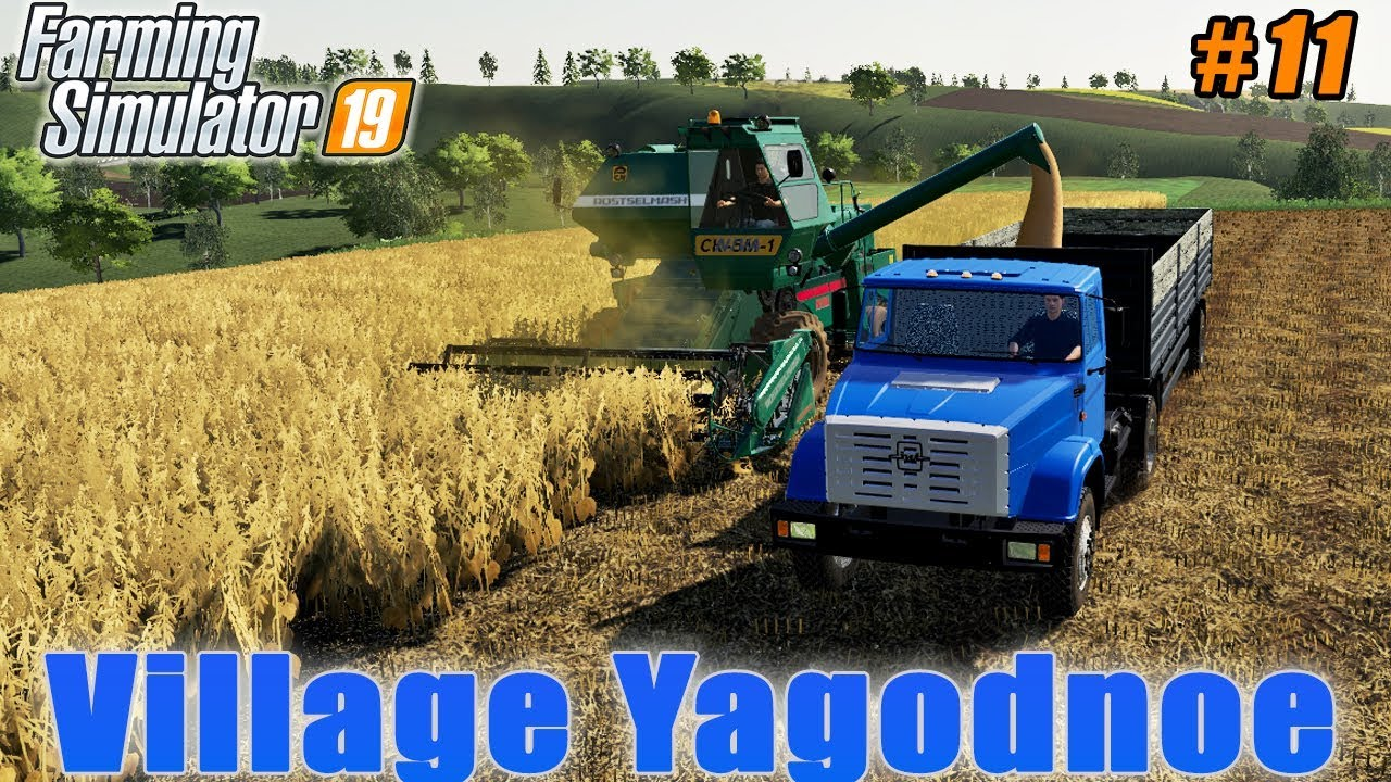Soybean harvesting, plowing and liming fields | Village