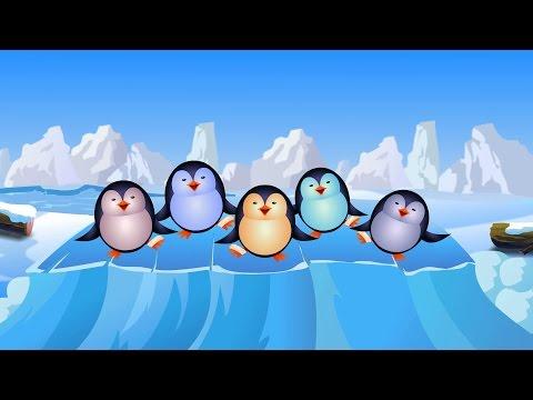 cinco pequeños pingüinos | Nursery compilación rima para niños y bebés