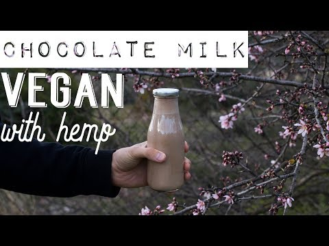 Chocolate Milk 🌱Vegan & Healthy 💚