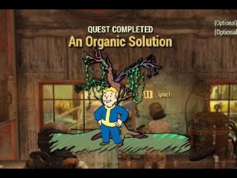 Fallout 76 - An Organic Solution Walkthrough - Daisycutter Fat Man Reward