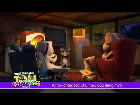 Trò chuyện với mèo Tôm SD 19006263