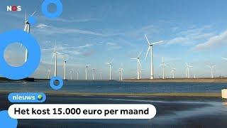 Windpark in Zeeland zet molens stil als vogels voorbij vliegen