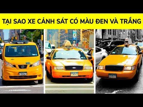Tại sao taxi New York có màu vàng