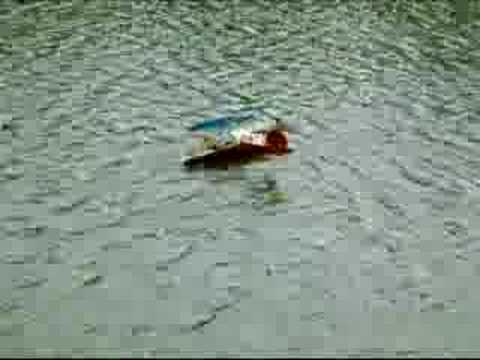 How to rescue a RC seaplane with a boat