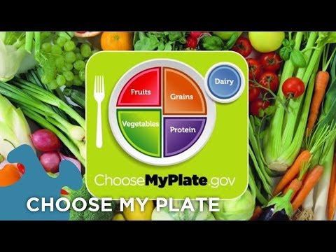 Choose My Plate Dietary Guidelines