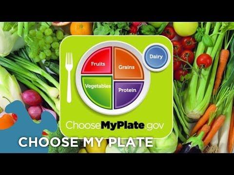 Choose My Plate Dietary Guidelines