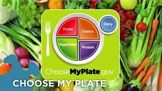 ... goodbye food pyramid, hello choose my plate! the plate dietary guidelines are latest tool used to measure ho...