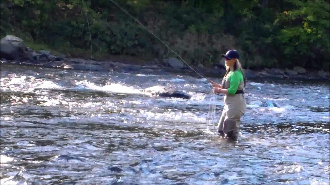 Foliage And Fly Fishing Nh Pemigewasset River Youtube