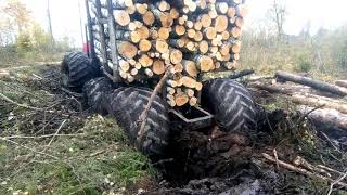 homemade forwarder(04.10.2019)