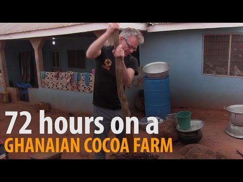 CARE Germany Deputy Director Stefan Ewers visits a cocoa farm in Ghana