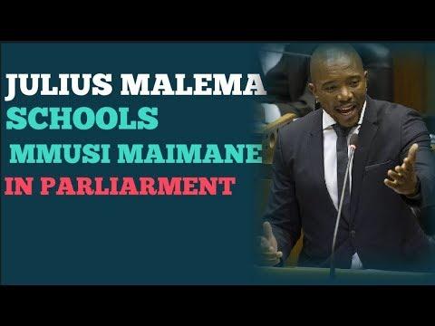 Classic response by Julius Malema to Mmusi Maimane