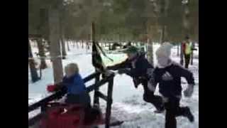 Klondike Sled Race 2013