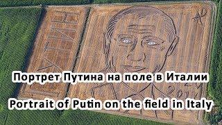 Портрет Путина на поле в Италии Portrait of Putin on the field in Italy