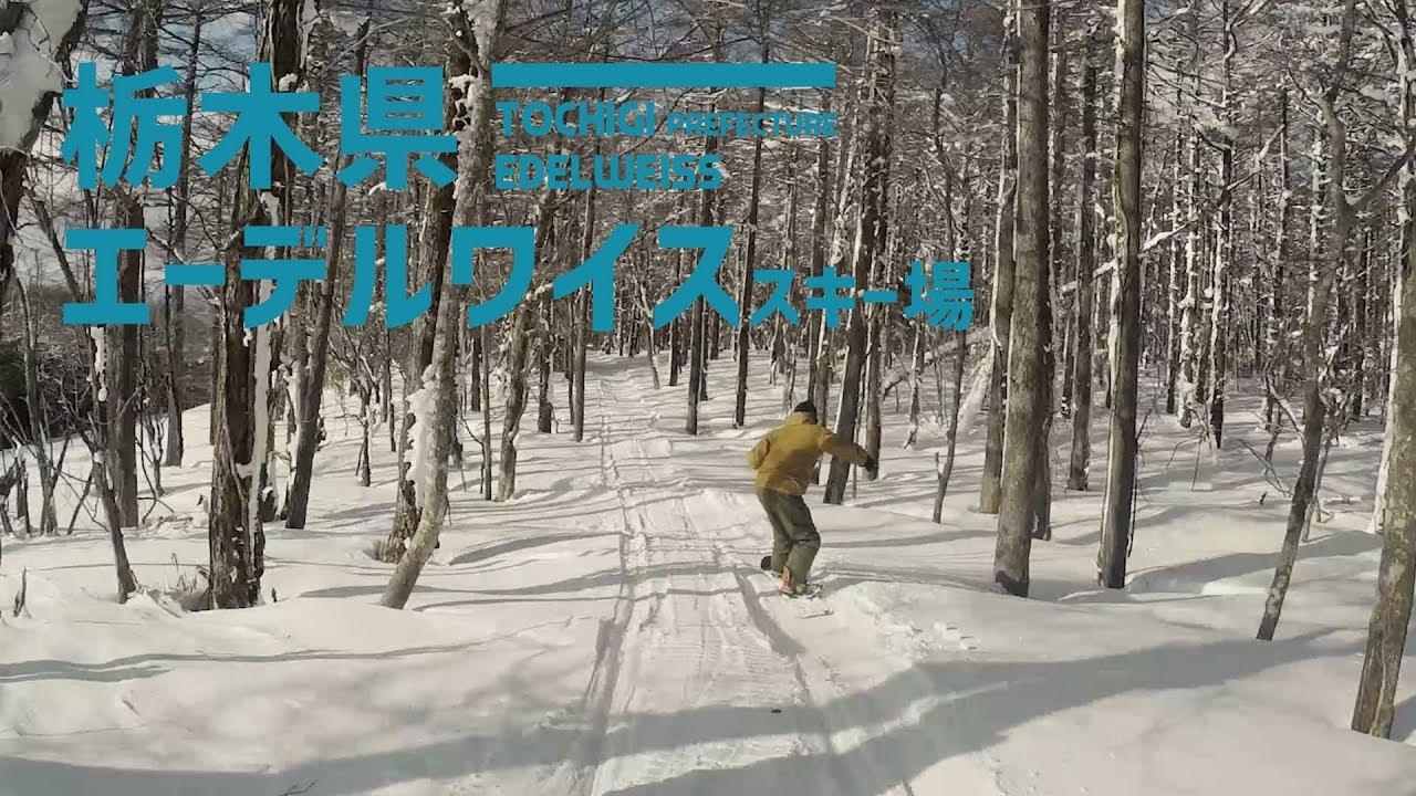 場 エーデルワイス スキー