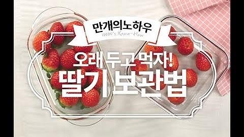 맛있는 딸기를 그냥 버리게 냅둘것인가?! 딸기보관법 [만개의노하우]