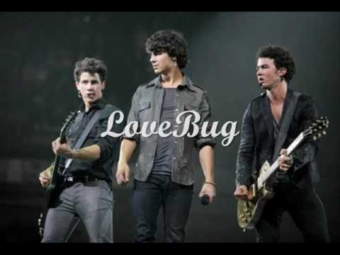 LoveBug - Jonas Brothers (traducida al español)