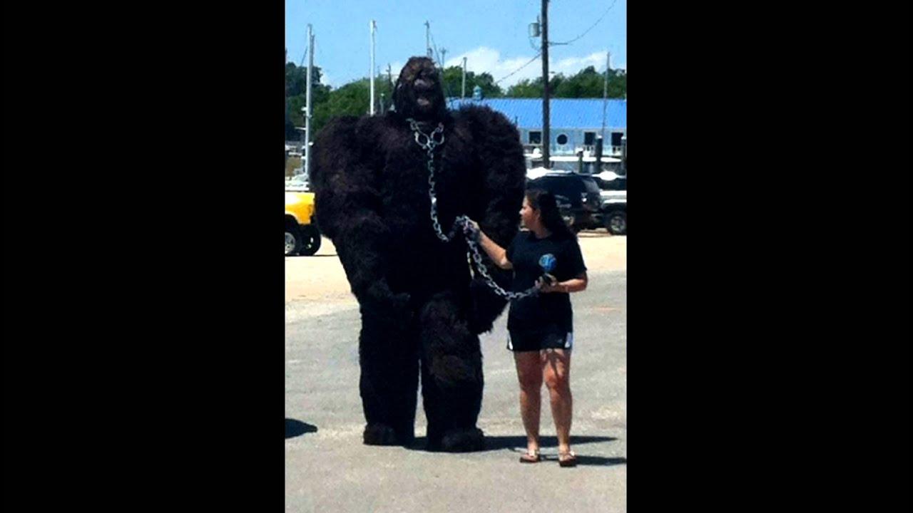 & Best Bigfoot costume ever - YouTube
