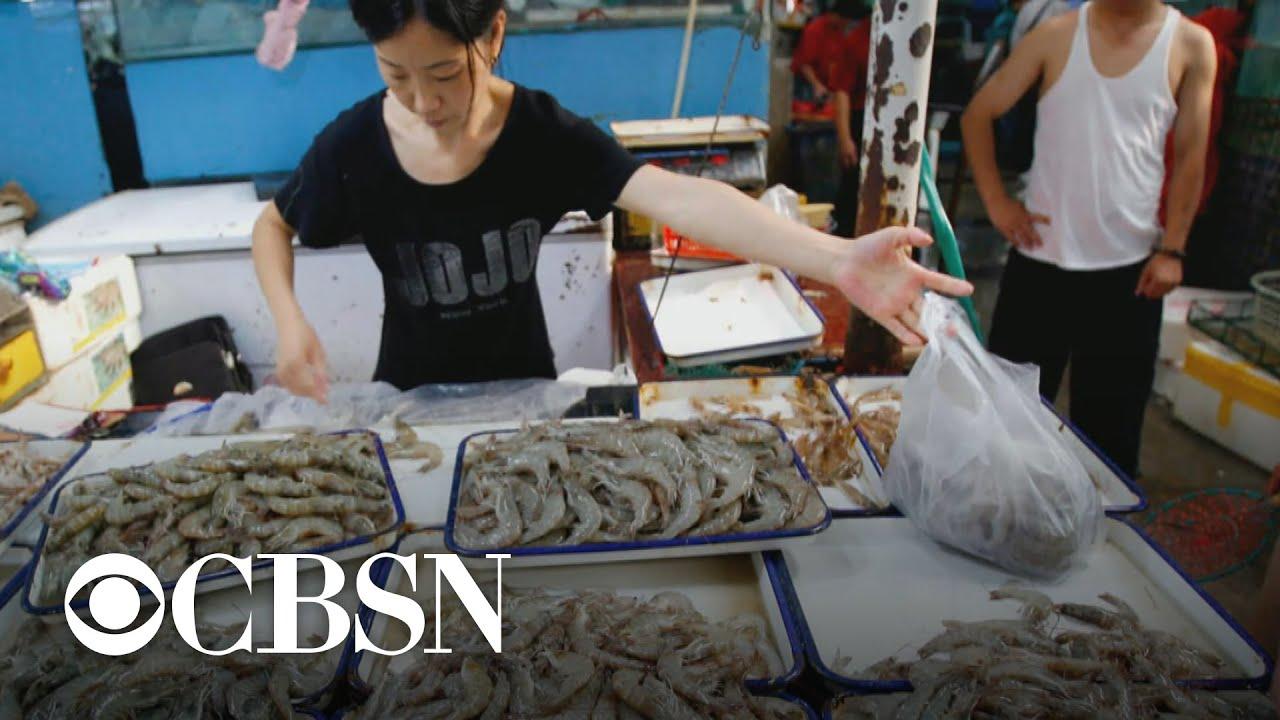 Coronavirus may have originated from Wuhan market - YouTube