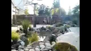Waterfall Patio Pond Arbor