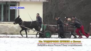 Тодорови КУШИИ  Котел