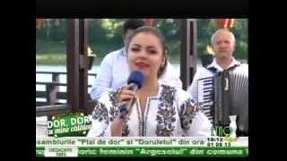 Felicia Nevodaru - Codrule cu frunza verde