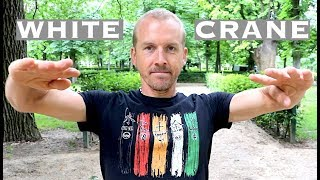 REAL KUNG FU - WHITE CRANE STYLE