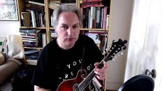 An Rógaire Dubh (jig) on mandolin