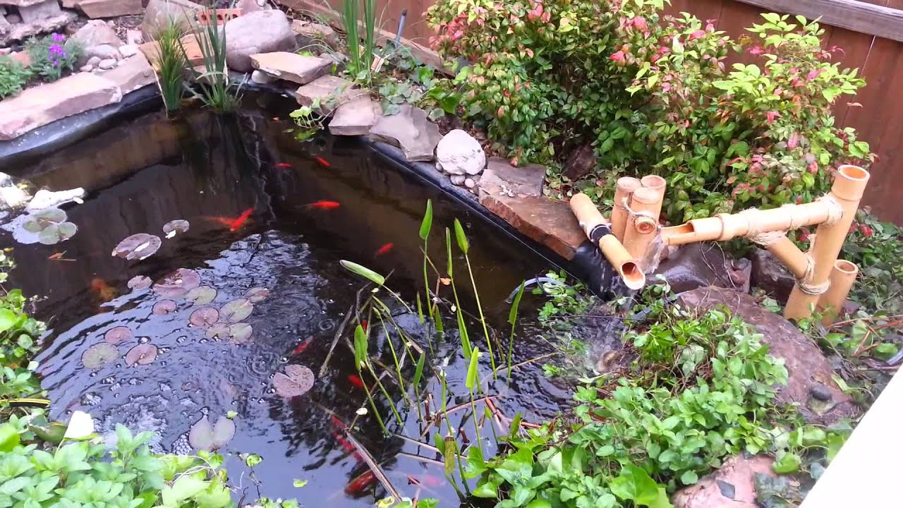 my pond with new bamboo fountain youtube