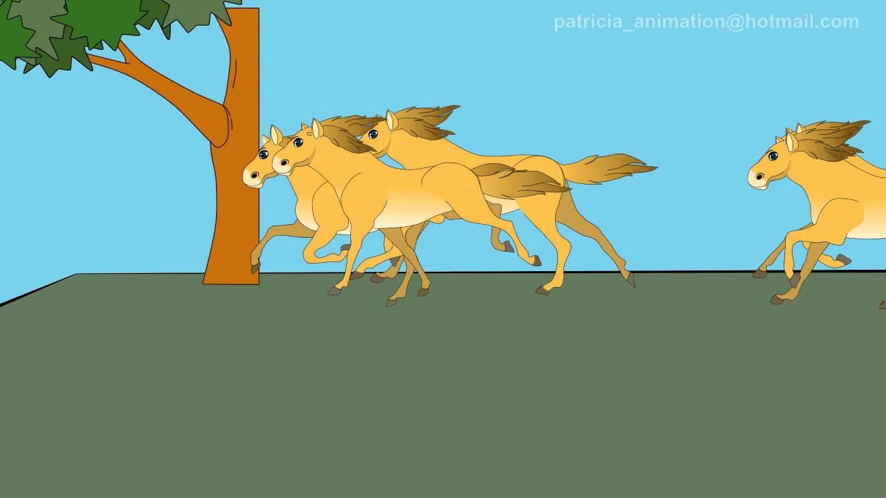 Horse Running Animation Anime Studio Pro - YouTube - photo#17