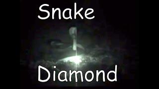 Snake Diamond Found In Jungle |- CP