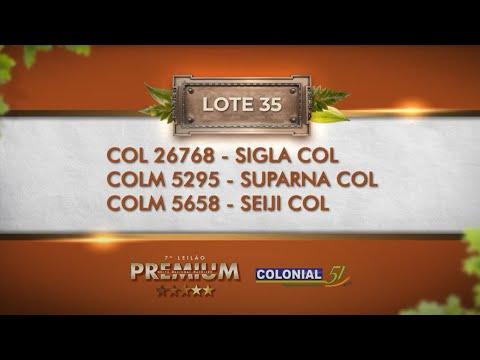LOTE 35   COL 26768, COLM 5295, 5658