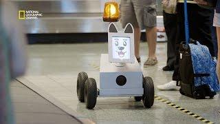 Ce chien robot met de l'ordre dans les aéroports
