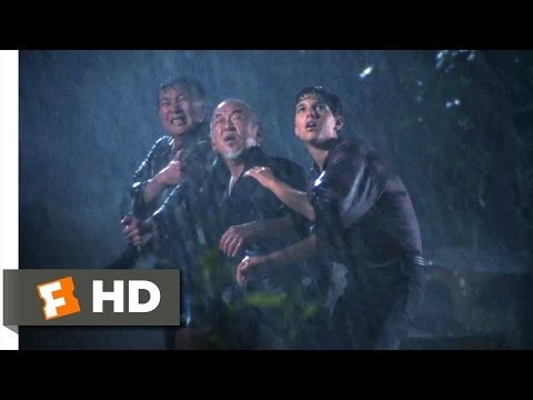 The Karate Kid Part II  Daniel's Daring Rescue  810  Movies