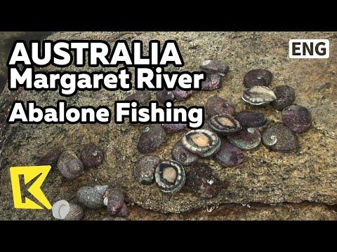 【K】Australia Travel-Margaret River[호주 여행-마가렛리버]자연산 전복 잡이/Abalone Fishing/Post Office/Seagull/Western