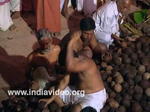 Coconut breaking ritual at Vettakkorumakan Temple Kannur product_image_not_available.gif