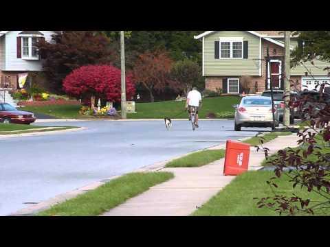 buddy cycling video 052