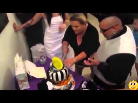 Про котят - смешное видео - 16 Января 2015 - Видео Блог