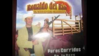 ''EL ZORRO DEL CORRIDO'' CON TUBA Y ACCORDION- ELPIDIO PASOS